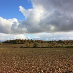 November ploughed fields resized